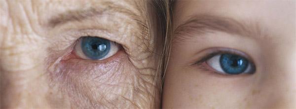 Почему мы стареем: теории и причины