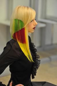 Выставка «ИнтерСтиль 2010» на Портале DiVA.BY. День 3-й. Международный парикмахерский фестиваль «Роза ветров — Hair 2010»