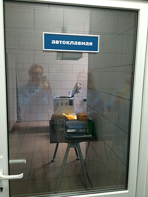 deshevoe-prostitutki-moskvi-na-kievskoy
