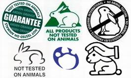 Европа запретила тестировать косметику на животных